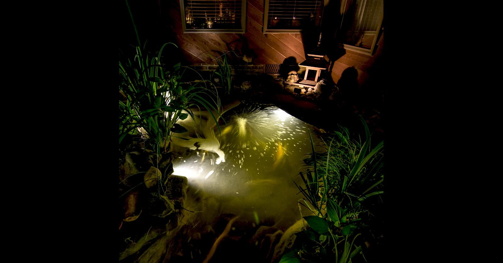 water feature lighting virginia beach