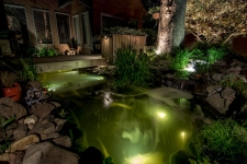 landscape accent lighting hampton va