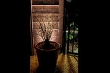 outdoor accent lighting newport news