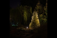 yard lighting installation virginia beach