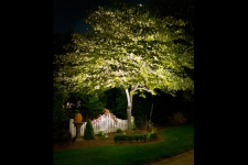 landscape accent lighting company