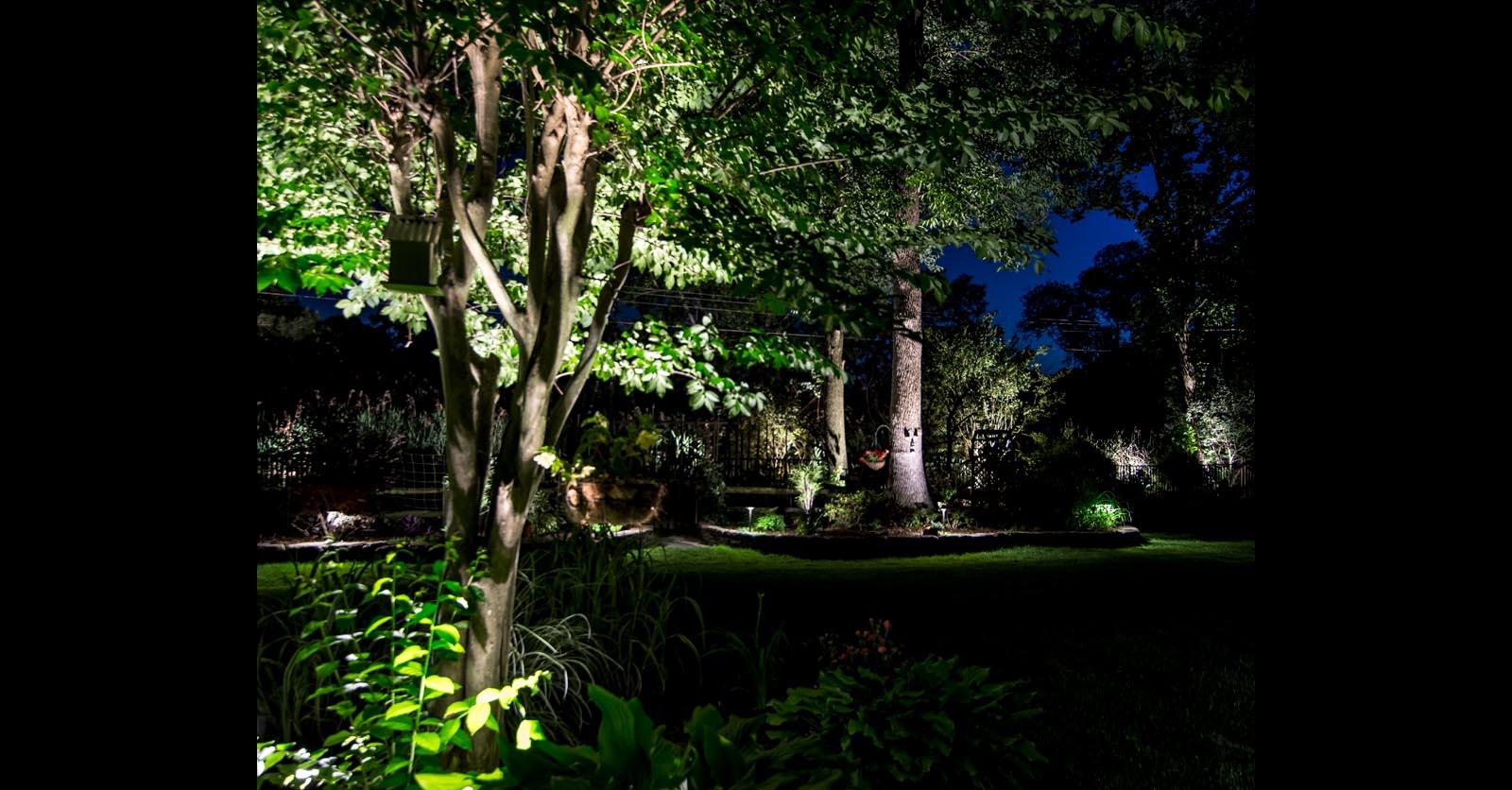back yard lighting williamsburg
