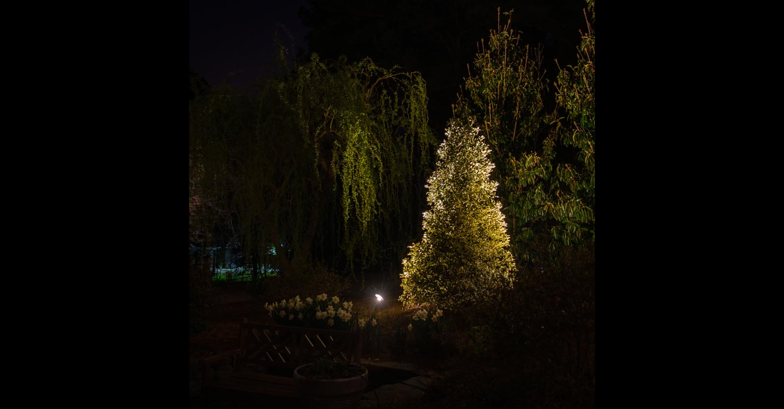 yard lighting installation virginia beach