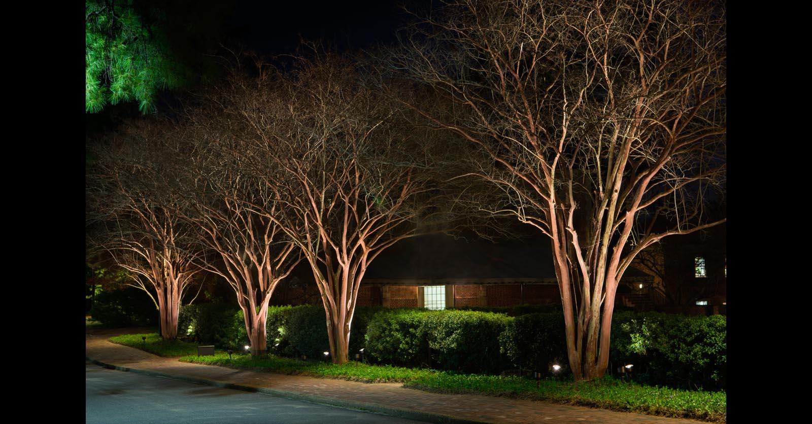 pathway lighting installation company chesapeake