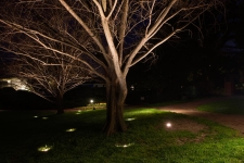 decorative outdoor lighting newport news