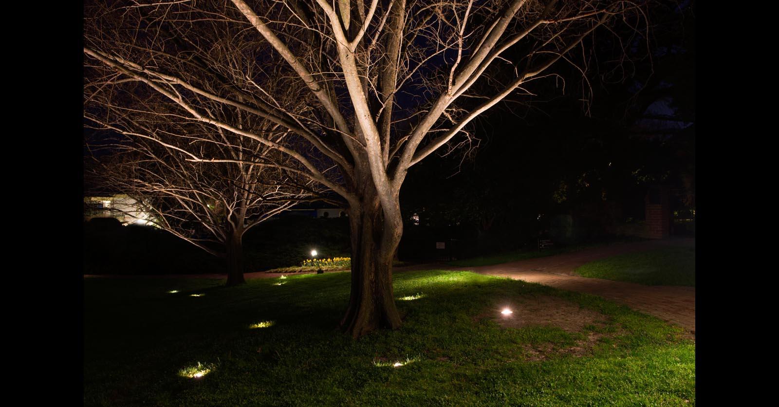 decorative outdoor lighting newport news