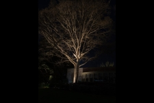 landscape lighting ideas hampton virginia