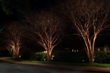 pathway lighting ideas virginia beach