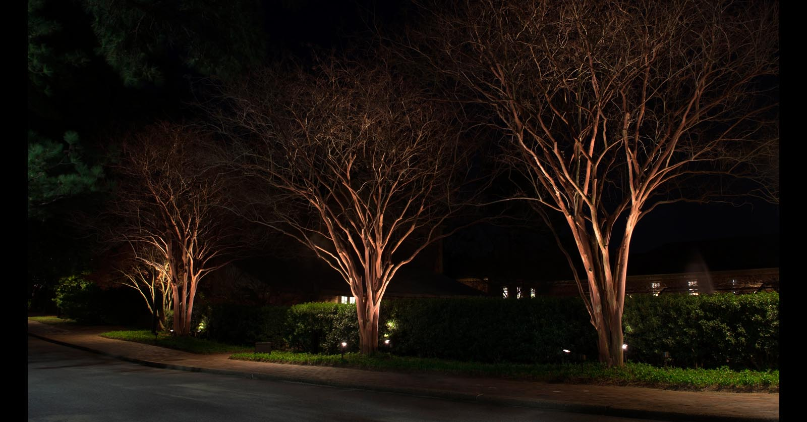 pathway lighting ideas virginia beach
