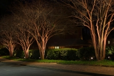 landscape lighting norfolk